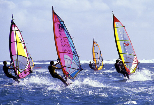windsurf 005