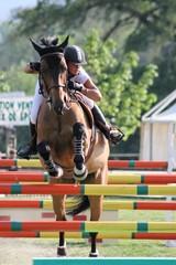 concours complet d'équitation