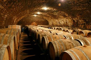 Fototapeta cave à vin