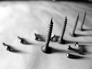 a bolt or screw