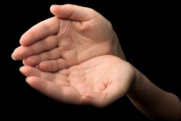 hands #16