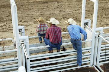 cowboys, young and old.