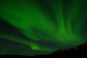 aurora arc