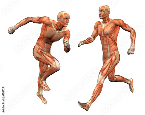 Как быстро набрать мышечную массу с помощью