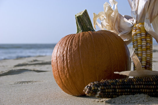 fall season beach party