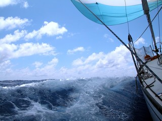 Deurstickers Zeilen sailing with wind