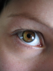 oeil marron