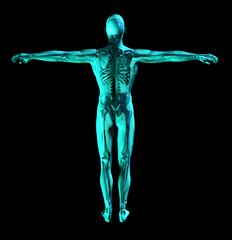 medical scan 2