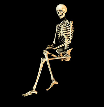 bone 30