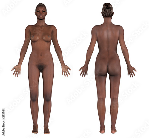 "human anatomy - african female"" stock photo and royalty-free, Human Body"