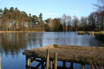 pontoon in th lake