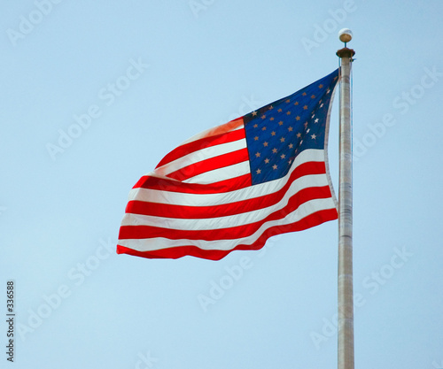 american government term paper Read texas government free essay and over 88,000 other research documents texas government the government of the state of texas is a difficult and complicated institution that is composed of many different levels.