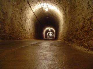 Stores à enrouleur Tunnel life tunnel