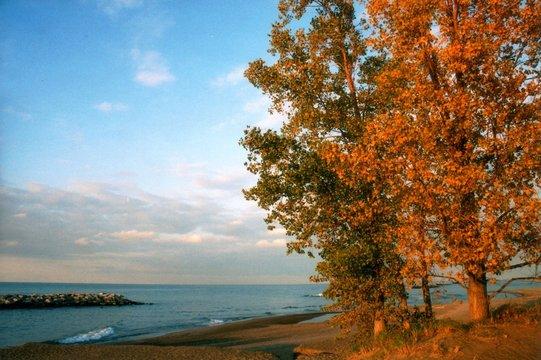 autumn at lake erie - horizontal