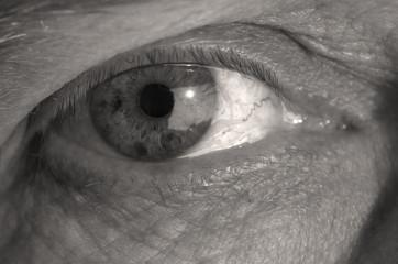 eye in macro