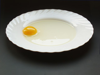still life with egg18