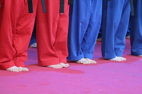 teaching kung fu
