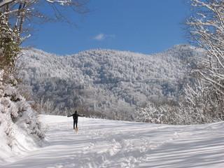 skiing on the blue ridge parkway
