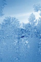 cyan frost