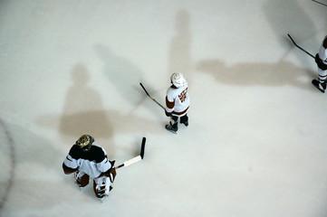 ice hockey #1