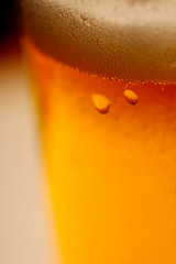 biere blonde right close up