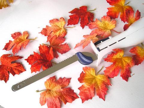 autumn electric knife