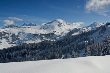 snowmount_8