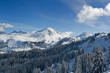 snowmount-9