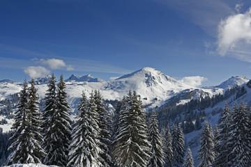 snow mount_10