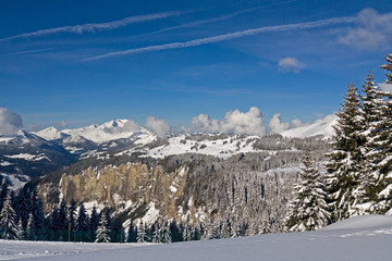 snowmount_20