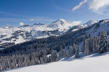 snowmount