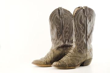 old snake skin boots