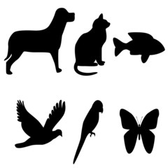 wild and domestic animals shapes illustration