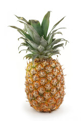 fruits pineapple