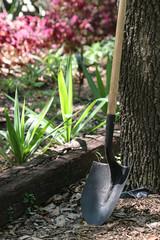 shovel in garden