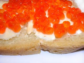 caviar close up