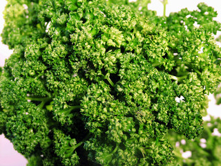 parsley (persil)