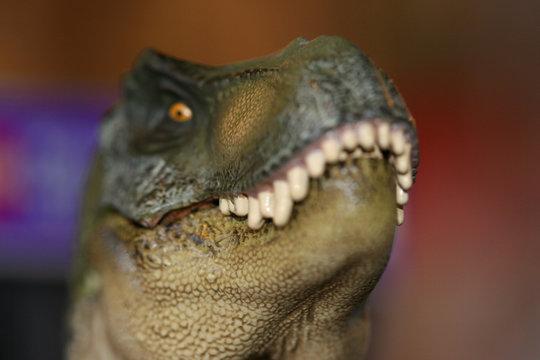 joe dinosaur