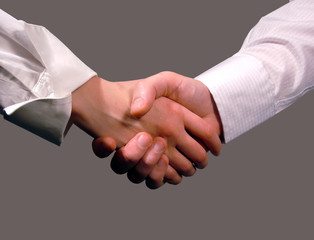 business handshake ,woman and man