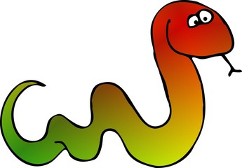 multicolored snake