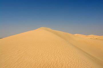 sahara 093