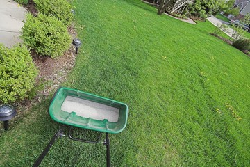 fertilizer and yard