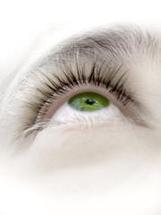 ojo verde xii