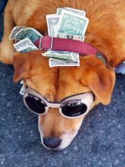 money holder