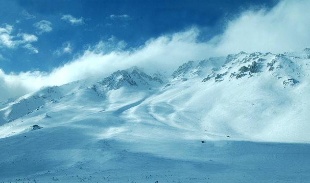mammoth mountain area