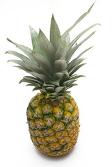 pineapple (top view)