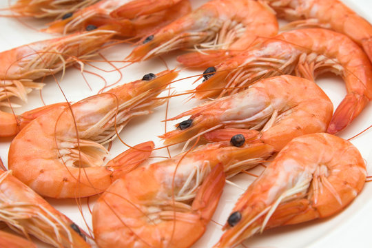 plate of cooked prawns