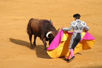 Photo sur Toile Corrida attacking bull.