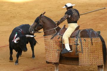 Photo sur Plexiglas Corrida bullfighting in sevilla