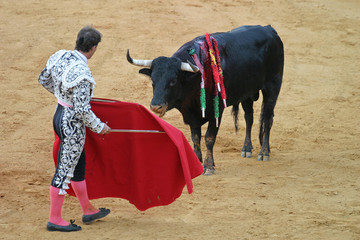 Foto op Canvas Stierenvechten bullfighting in seville